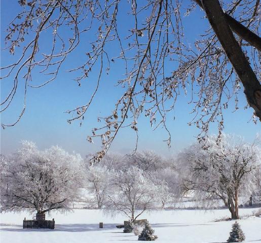 Riverview Park Clinton, Iowa after Winter storm